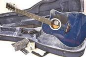ESTEBAN MUSIC Electric-Acoustic Guitar MIDNIGHT MOON
